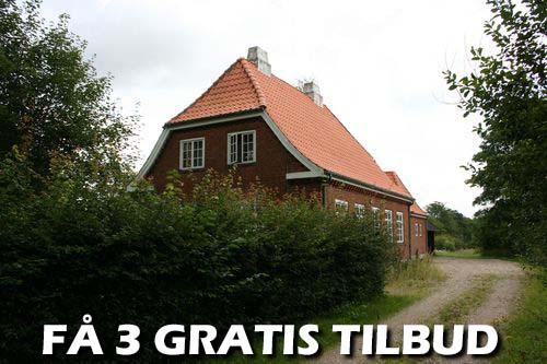 Træfældning Roskilde