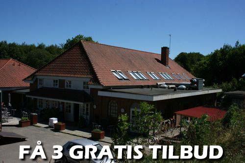 Træfældning Kalundborg